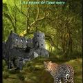 Premier livre de Mael à découvrir : LES ANIMAUX LÉGENDAIRES