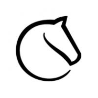 Tournois en ligne - Inscrivez-vous sur LICHESS